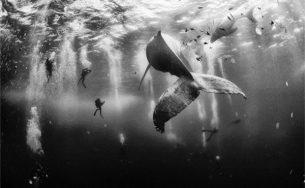 10 bức ảnh đẹp nhất cuộc thi Ảnh du lịch National Geographic 2015