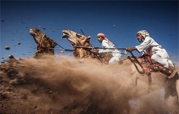 Giải ba của cuộc thi đã thuộc về tác giả Ahmed Al Toqi với hình ảnh cuộc đua lạc đà truyền thống ở Oman.
