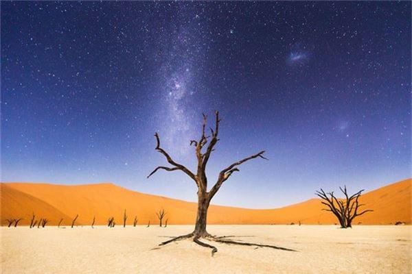 Khung cảnh huyền bí ở Deadvlei, Windhoek, Namibia, với hình ảnh cây Acacia erioloba 900 năm tuổi đã bị khô héo nhưng không bị phân hủy - Ảnh đoạt giải khuyến khích của Beth McCarley/hạng mục Cảm xúc về nơi chốn.