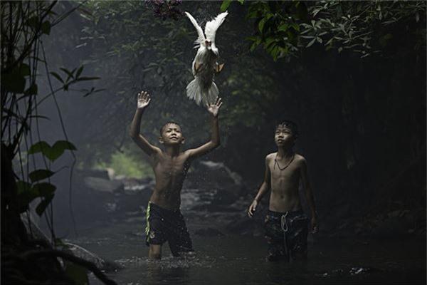Hai cậu bé đang cố gắng bắt một con vịt tại một dòng suối ở tỉnh Nong Khai, Thái Lan - Ảnh đoạt giải khuyến khích của Sarah Wouters/hạng mục Khoảnh khắc tức thời.