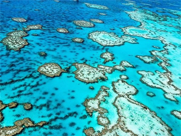 <strong>2. Great Barrier Reef, Australia: </strong>Trải dài gần 3.000 km vùng biển phía Đông Bắc Australia, đây là nơi có mạng lưới san hô lớn nhất thế giới với hàng nghìn loài cá và sinh vật biển.