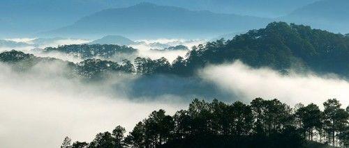 Đà Lạt mờ sương