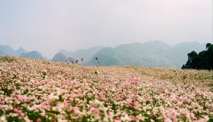 Khung trời thần tiên tuyệt diệu trong cổ tích - Ảnh: Binh Minh Nguyen Huu