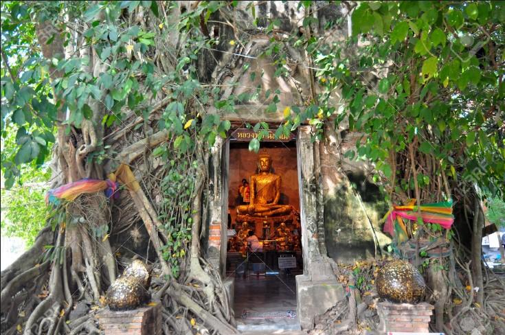 Ngôi chùa Wat Bang Koong đặc biệt