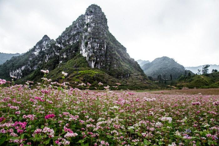 """Đến Hà Giang mùa đông ngắm """"đá nở hoa"""" - Ảnh: Anh Dang"""