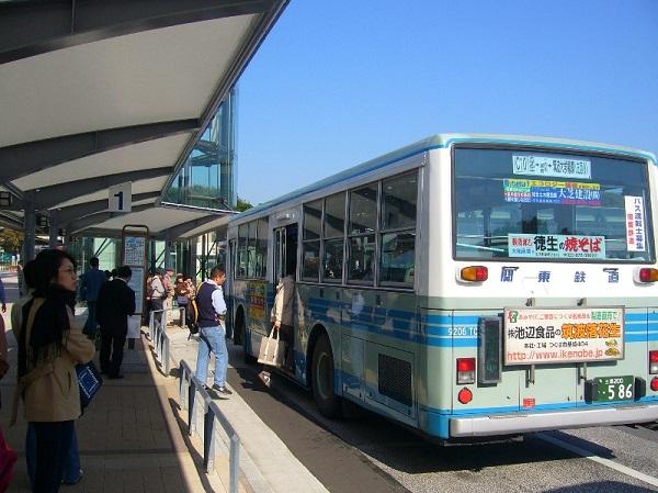 Bạn có thể di chuyển bằng xe bus...
