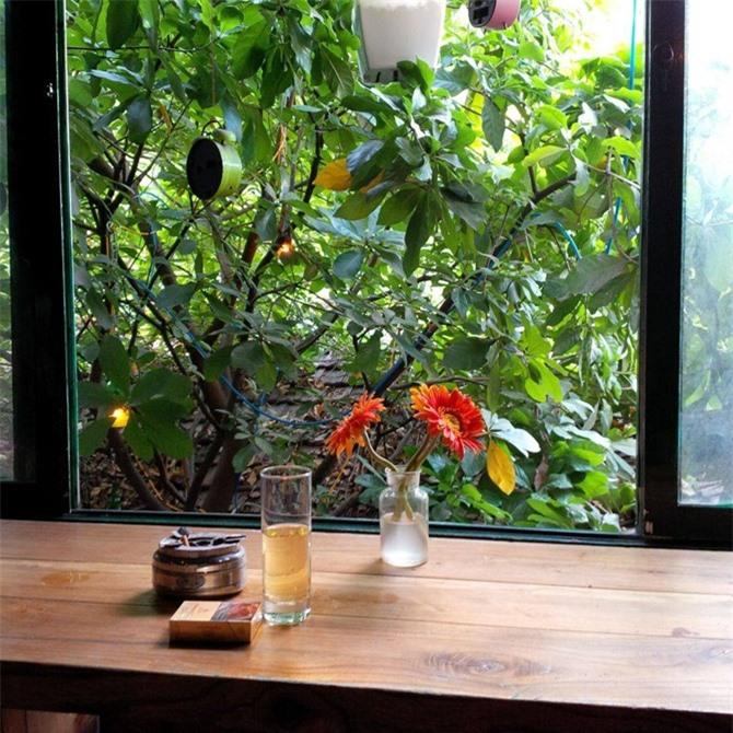 4 quán cà phê dành riêng cho người yêu nhạc Trịnh trên đất thủ đô