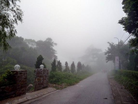 Tam Đảo mờ ảo trong sương sớm