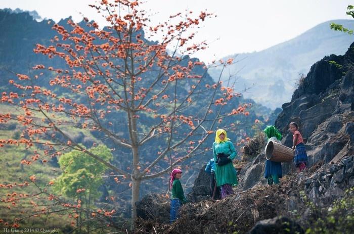 Cuộc sống của người dân trên cao nguyên đá Đồng Văn