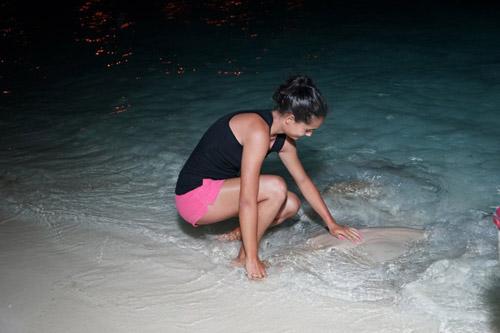 Du khách cho cá đuối ăn ban đêm.