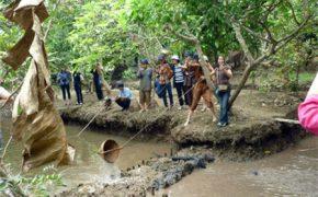 Cẩm nang cho chuyến du lịch xứ dừa Bến Tre