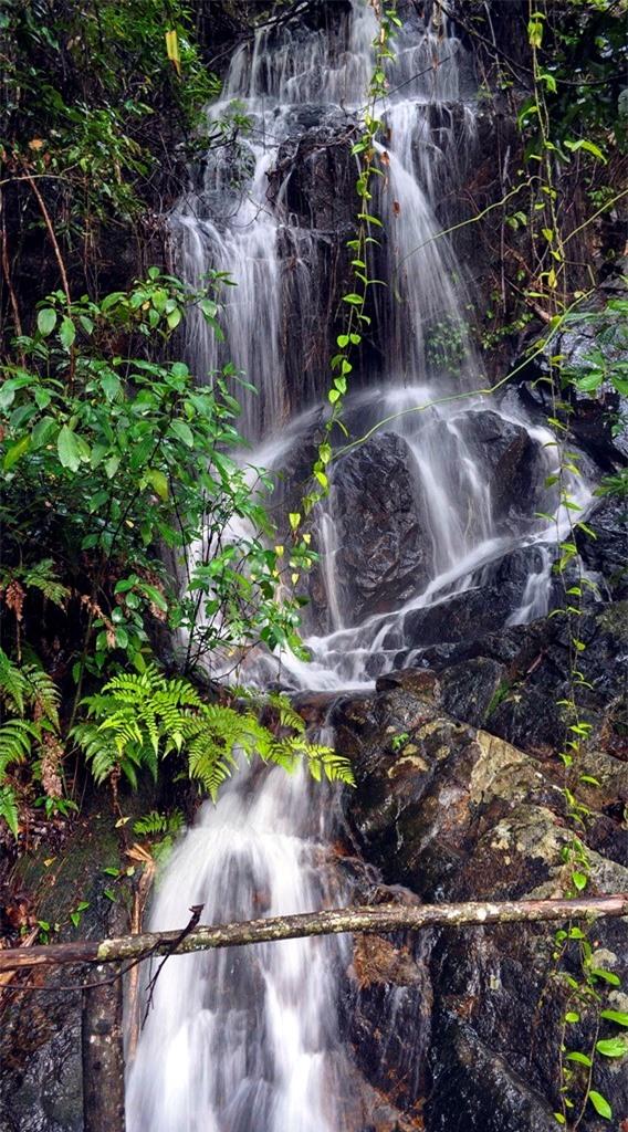 Một thác nước trên đường đi vào Núi Voi.