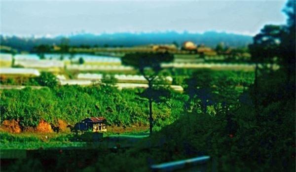 Sau chuyến xe đêm khởi hành từ Sài Gòn, chúng ta bắt đầu hành trình về với thiên nhiên hoang dã tách biệt với thế giới hiện đại. Buổi sáng đầu tiên đặt chân đến đây bạn sẽ có cảm giác thích thú với tiết trời trong lành.