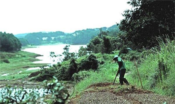 Đến với xứ sở của mây và sương này hẳn nhiên bạn sẽ được những người dân bản địa kể cho nghe câu chuyện tình tha thiết buồn của nàng Bian và chàng Lang, đây cũng là nguồn gốc của tên núi Voi ngày nay.
