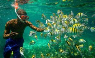 Du lịch quốc đảo Jamaica xanh mát