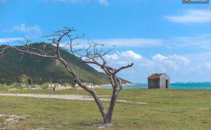 Du lịch biển đảo Điệp Sơn – Hòn đảo hot nhất hè nưm 2016 này