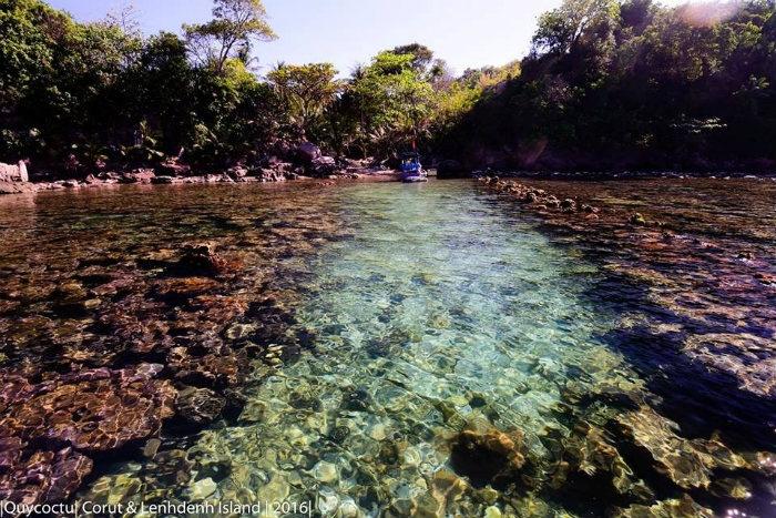 San hô ở Hòn Móng Tay