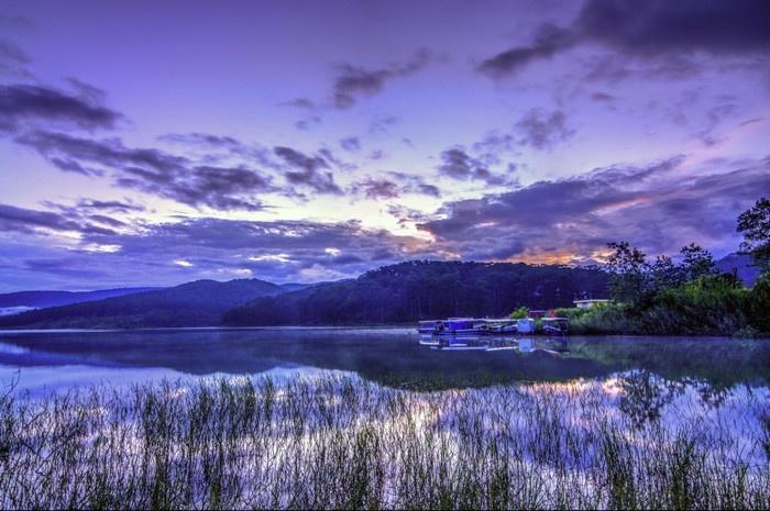 Sắc tím mộng mơ bên hồ Tuyền Lâm xinh đẹp