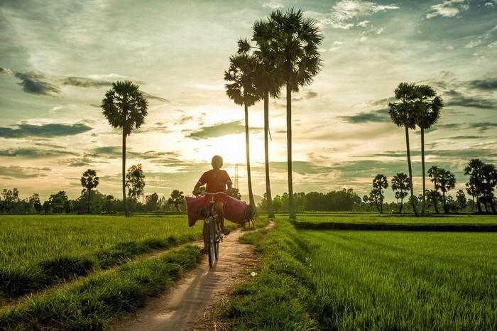 Khung cảnh bình yên ở miền Tây - Ảnh: Nguyễn Quốc Thắng