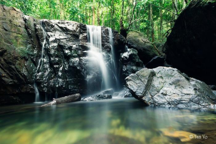 Những dòng suối trong vắt trong rừng Phú Quốc - Ảnh: Tam Vo