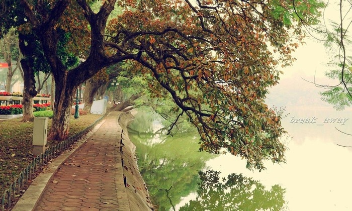 Thu Hà Nội không chỉ đẹp lãng mạn mà còn ấm áp những vị chè thơm