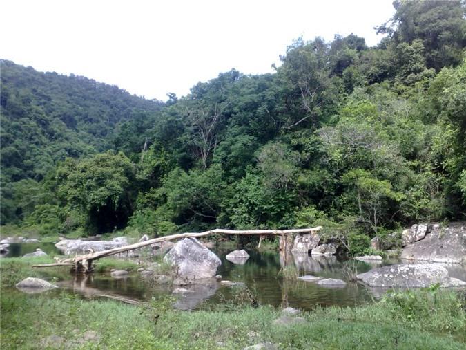 Rừng Khe Rỗ ở Bắc Giang