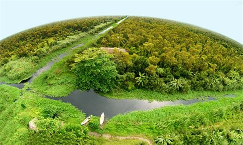 Rừng quốc gia U Minh Hạ nhìn từ trên cao