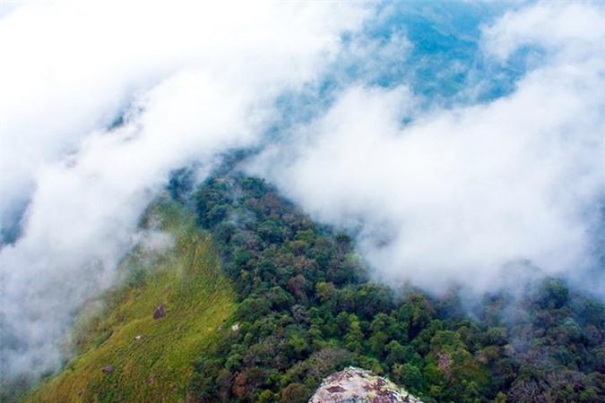 Hai thảm thực vật khác nhau nhìn từ đỉnh núi Pha Luông (trái Việt Nam, phải Lào)