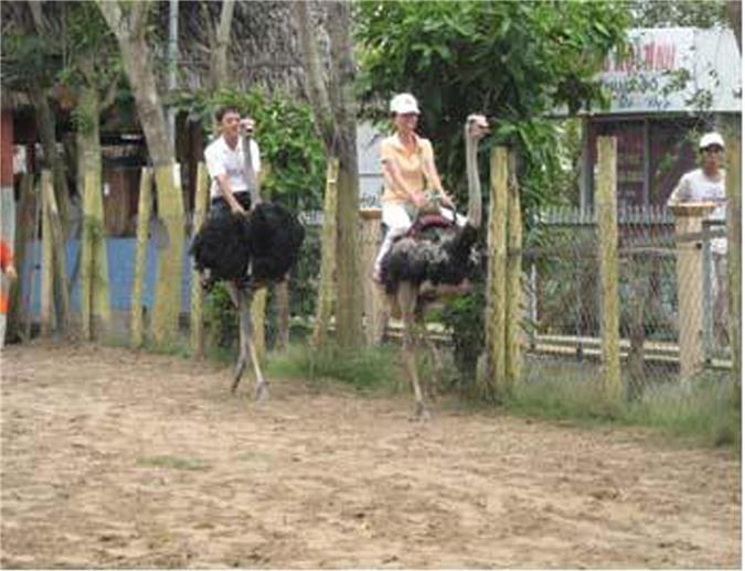 Khu du lịch sinh thái Vĩnh Sang