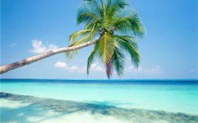 Mexico rực rỡ những bãi biển đẹp