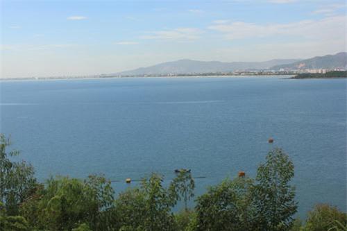 Ngắm cảnh thiên nhiên tươi đẹp trên đèo Hải Vân - 4