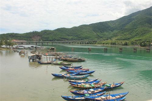 Ngắm cảnh thiên nhiên tươi đẹp trên đèo Hải Vân - 7