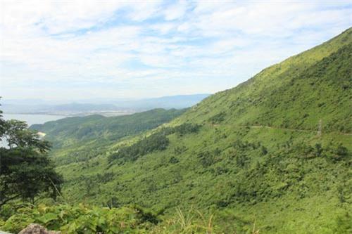 Ngắm cảnh thiên nhiên tươi đẹp trên đèo Hải Vân - 1