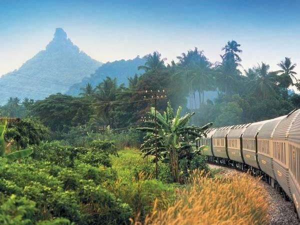 Tàu tốc hành Phương Đông (Eastern and Oriental Express): Chuyến tàu của hãng đường sắt Belmond có lộ trình đi qua nhiều địa danh tại Đông Nam Á. Cửa sổ khoang ăn uống trên chuyến tàu có thiết kế rộng, giúp hành khách tận hưởng khung cảnh bên ngoài theo cách trọn vẹn nhất.