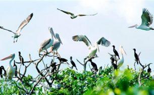 Thăm khu du lịch sinh thái nổi tiếng ở Bạc Liêu
