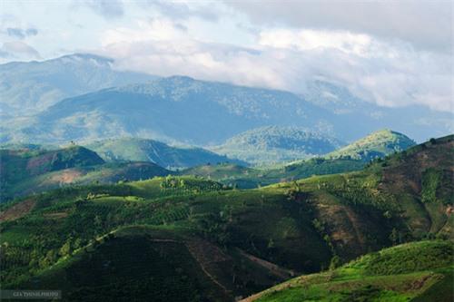 trượt zipline, trà Bảo Lộc, thác Dambri, du lịch Bảo Lộc