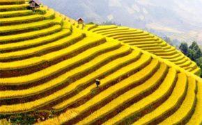 Tuần lễ Văn hóa, du lịch miền Tây Yên Bái năm 2015