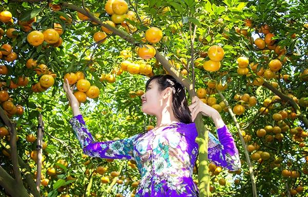 Vườn trái cây Mỹ Khánh - Cần Thơ