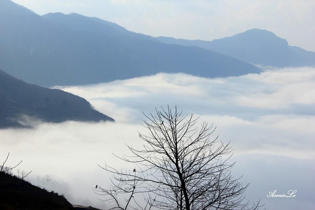 Sóng mây Y Tý cuồn cuộn