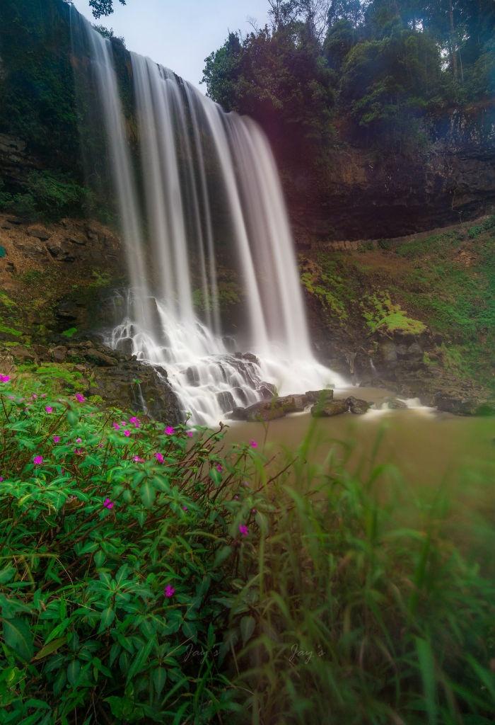 Xung quanh thác Đambri là những bụi hoa tím ngắt - Ảnh: Jay Nguyen