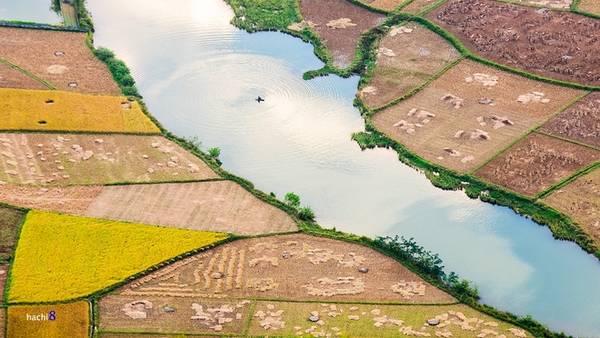 Những con kênh soi bóng mây trời xanh mát nằm xen các thửa ruộng đang giữa mùa vụ.