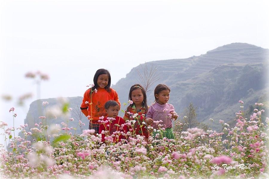 Trong trẻo màu hoa cùng trẻ em miền núi - Ảnh: Doan Quoc Tuan