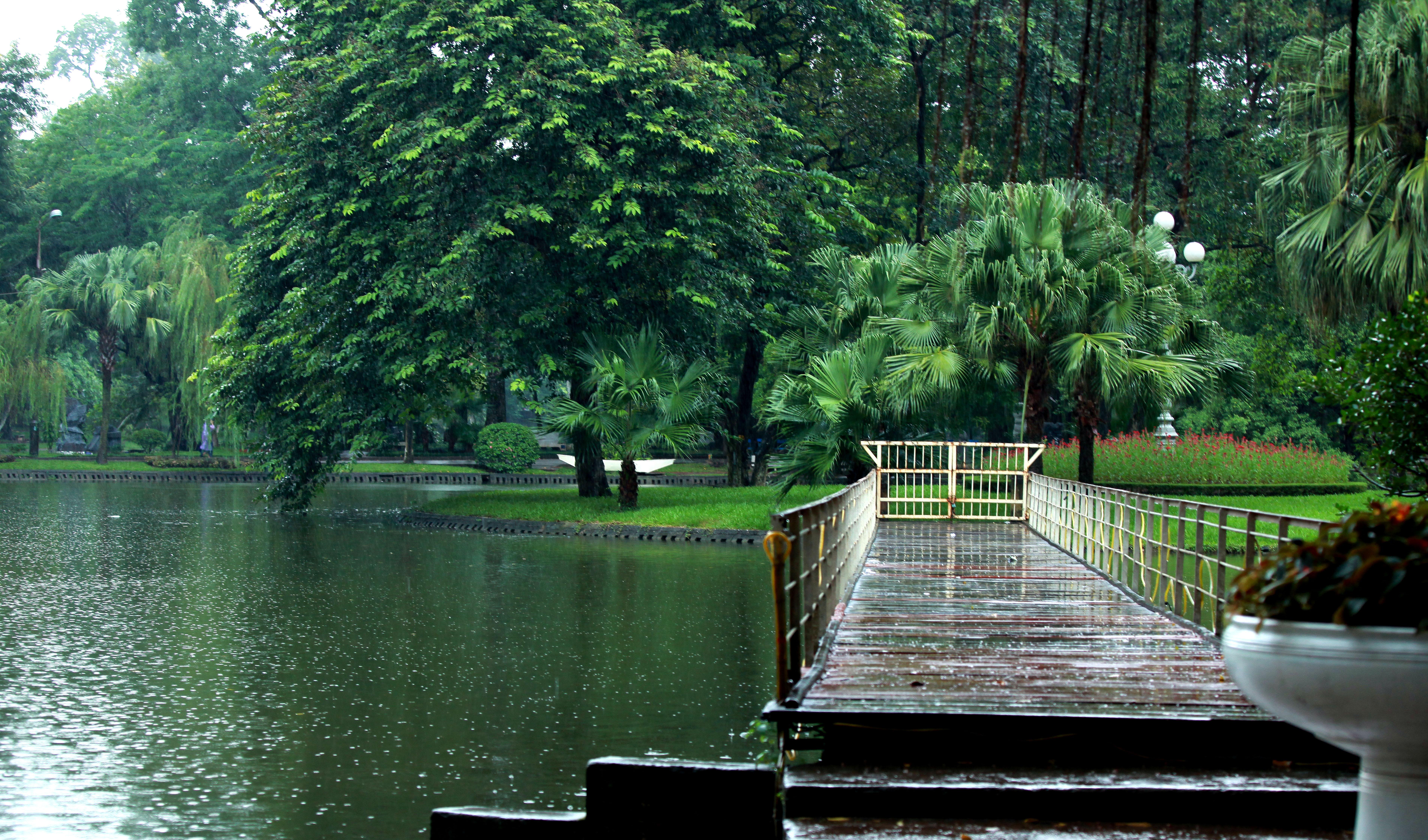 Vườn Bách Thảo được ví như lá phổ xanh của thủ đô