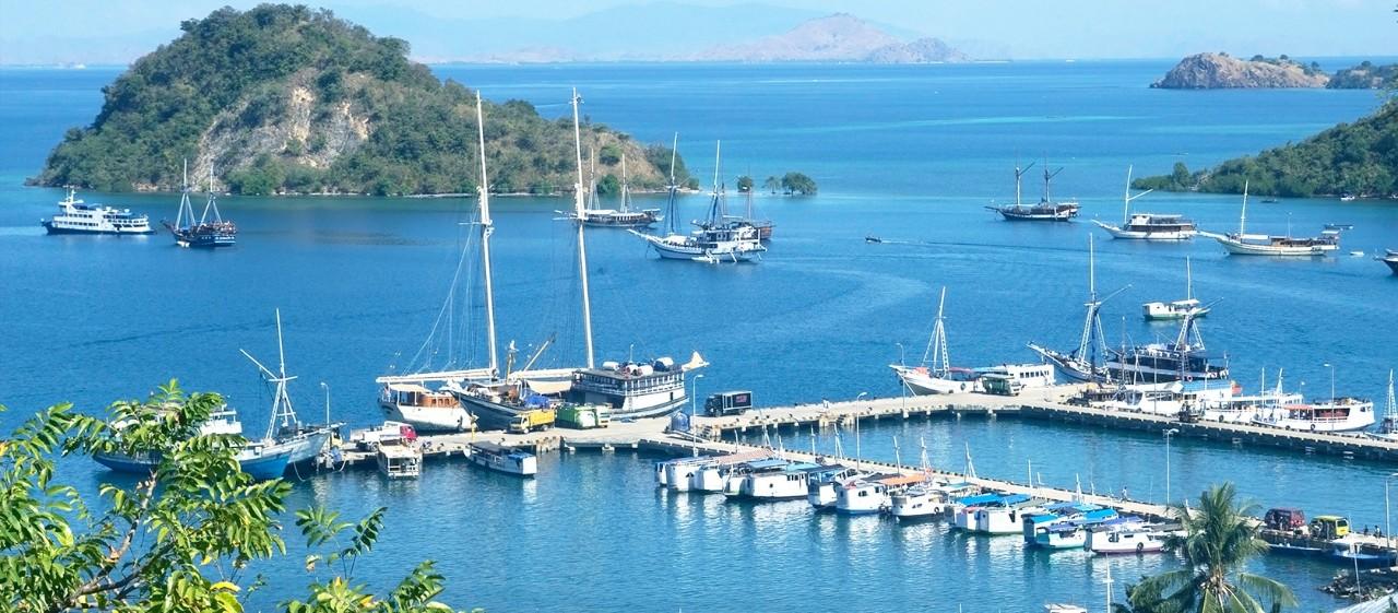 Tại Lebuan Bajo sẽ có rất nhiều công ty dịch vụ thuyền bè cho bạn lựa chọn