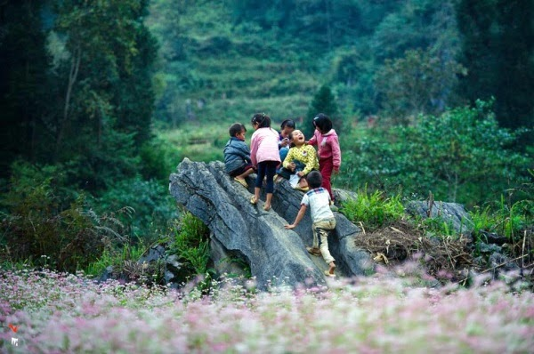 du lịch Hà Giang