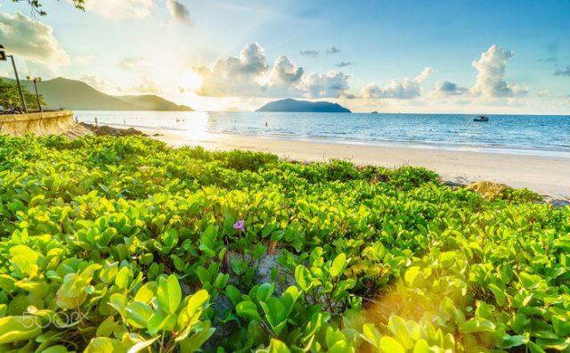 Côn Đảo – Mê Hoặc 5 Bãi Biển Đẹp Tựa Chốn Tiên