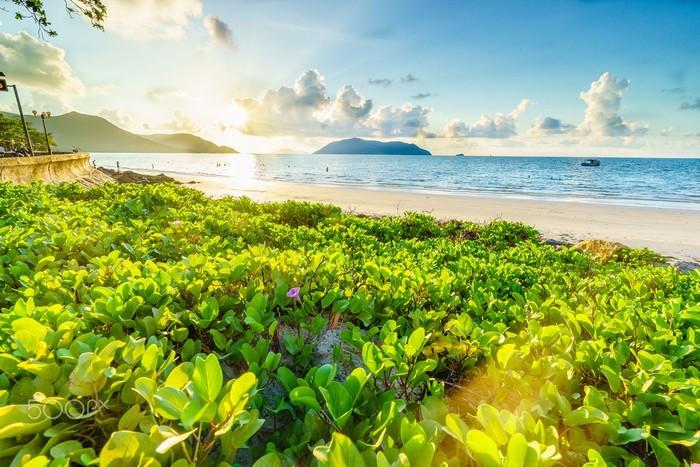 Biển Côn Đảo xanh trong đón chào du khách mùa hè - Ảnh: Hải Vũ