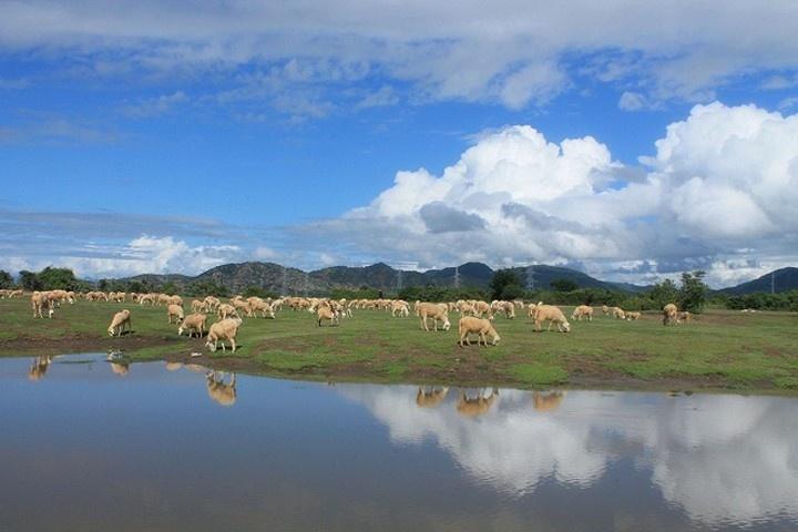 Mát lành cùng đồng cỏ và hồ nước mênh mang