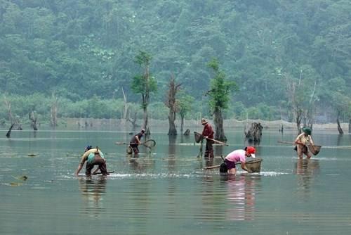 Hồ vừa có thể nuôi trồng thủy sản, vừa có thể trồng trọt rau màu