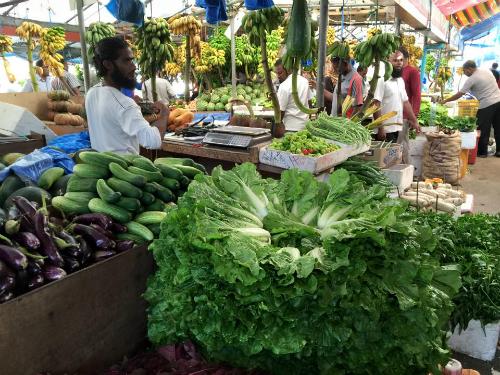 Khu chợ địa phương với những người dân Malé thân thiện